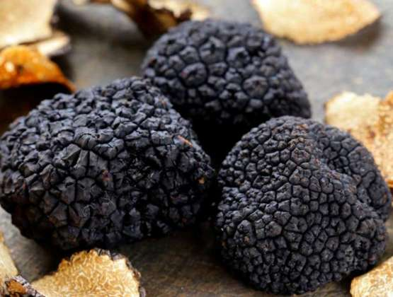 Tartufo Nero Pregiato, Menu degustazione – Giovedì 31 Gennaio