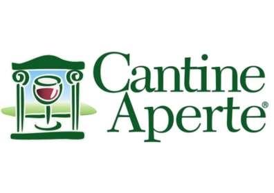 Cantine Aperte in Umbria 2019 – Dal 25 al 26 Maggio