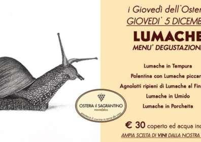 Lumache – Menu degustazione il 5 Dicembre